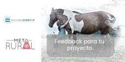 cabecera-feedback-metarural.jpg